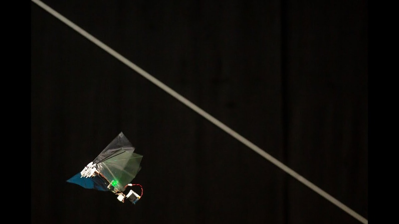 DelFly Nimble - an agile insect-inspired robot
