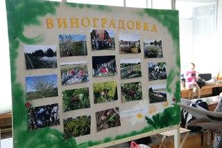 Стенд поселения Виноградовка, Липецкая область.