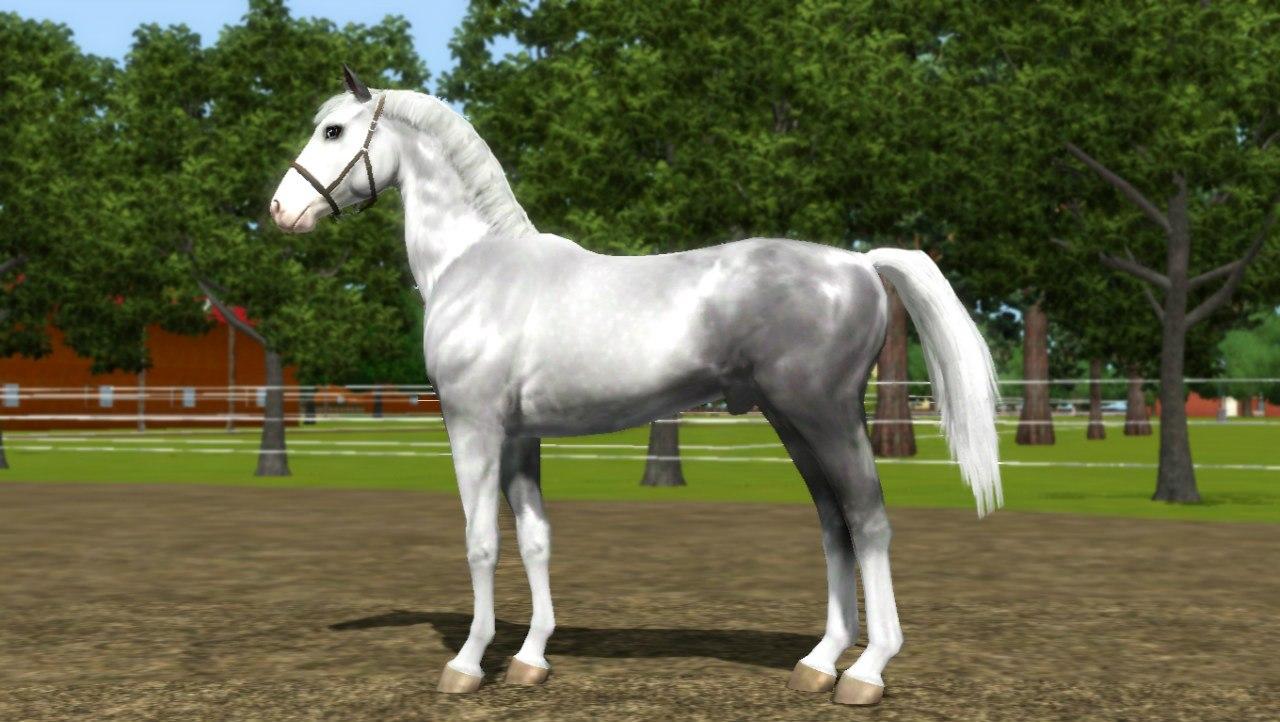Заявки на удаление лошади из списка - Страница 2 FDvdlm6lLio