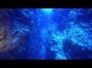 Canyon Eel Garden - Sharm el Sheikh - Ras Mohamed