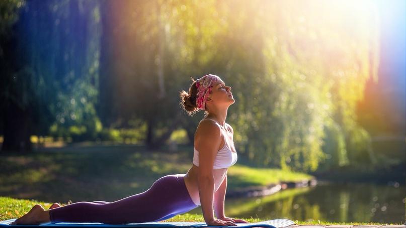 Йога. Физкультура или инструмент развития? 🤔