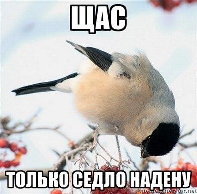 http://cs405329.userapi.com/v405329490/7588/RAj4TCfpPdg.jpg