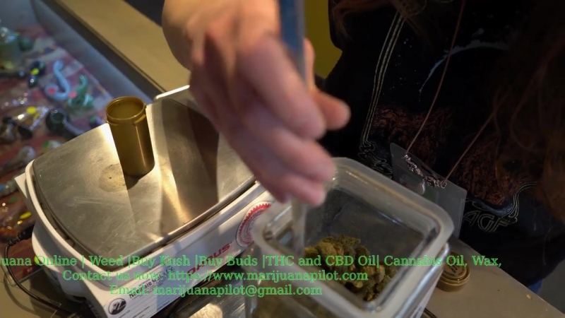 Buy Moonrocks Marijuana Strain, Gelato Kush, High THC Cannabis Oil, CBD Oil @ www.marijuanapilot.com