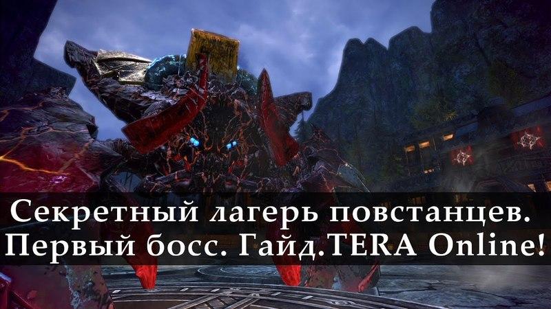Секретный Лагерь Повстанцев Гайд Первый босс TERA Online