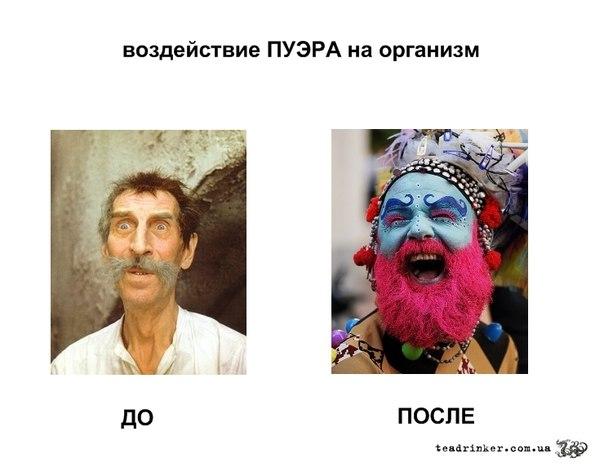 http://cs408924.vk.me/v408924373/34ec/hn0XQeMjjNk.jpg
