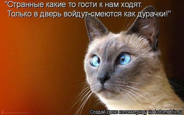 https://pp.userapi.com/c605317/v605317760/5a71/V2RvqJLQHOU.jpg