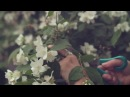 Kinfolk Flower Potluck - Charlotte NC
