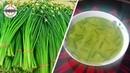 পিয়াজের কলি দিয়ে মাসকলাই এর ডাল রান্না Piajer Koli Recipe O