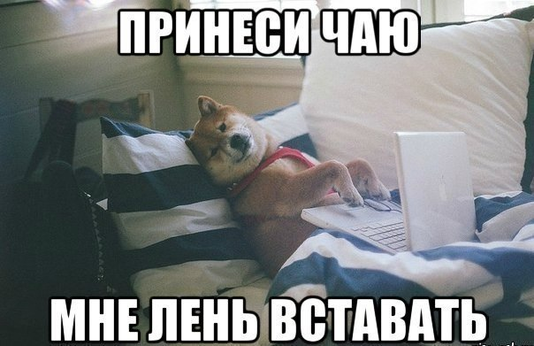 http://cs409829.vk.me/v409829666/25fd/YjT2SO6Cng4.jpg