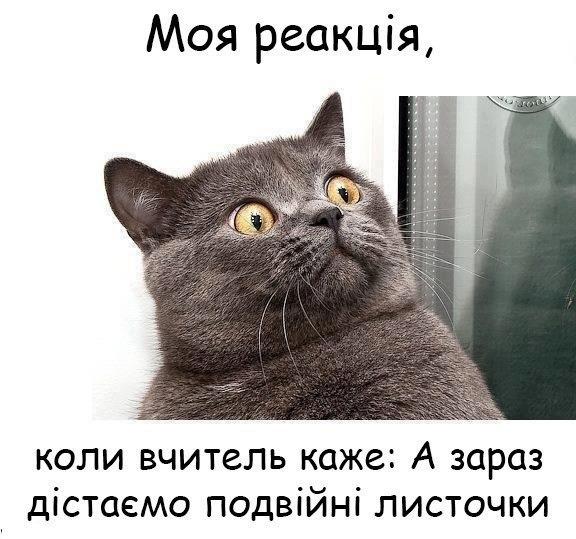 Ua 2013 анекдоти приколи україна vk