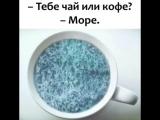 visa_prosto_nalchik___?utm_source=ig_share_sheet&igshid=s19cw4wlvkaz___.mp4