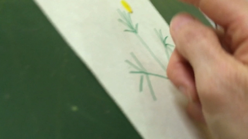 Нетрадиционная техника рисования Пижма