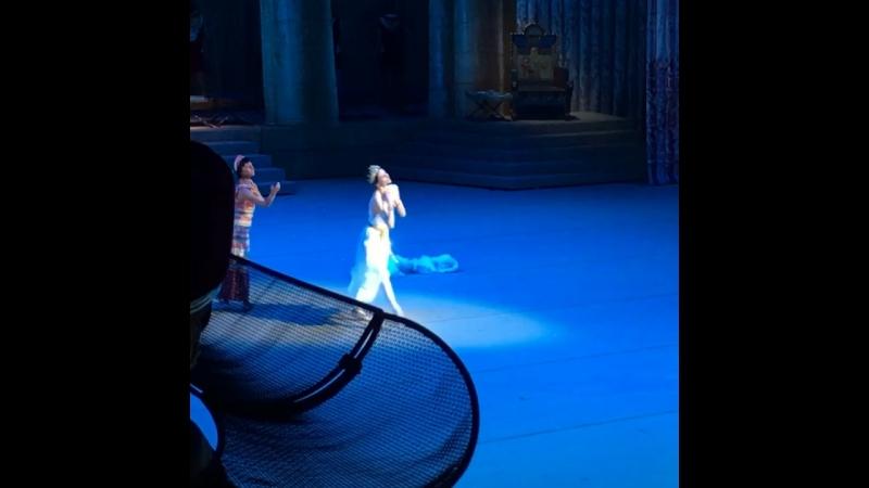 "Video - 40/1, 19.07.2018 ""La Fille du Pharaon"" Svetlana Zakharova and Denis Rodkin, BolshoiTheatre 🎭"