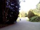 белфаст парк кормушки