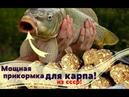 Мощная прикормка на карпа из СССР своими руками Карп не устоит