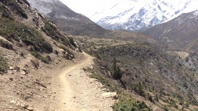 Человек в зеленой фуражке путешествие по Гималаям