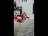 Тренировка дома с ребенком