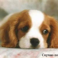 Малышка Сладкая, 2 декабря 1992, Самара, id225652873
