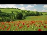 Самая красивая музыка на свете - Эннио Морриконе _Плач ветра_ - Ennio Morricone _Cry wind_