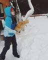 _fedorova_julia_ video