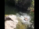 2.Девушка на рыбалке. Lady Fish