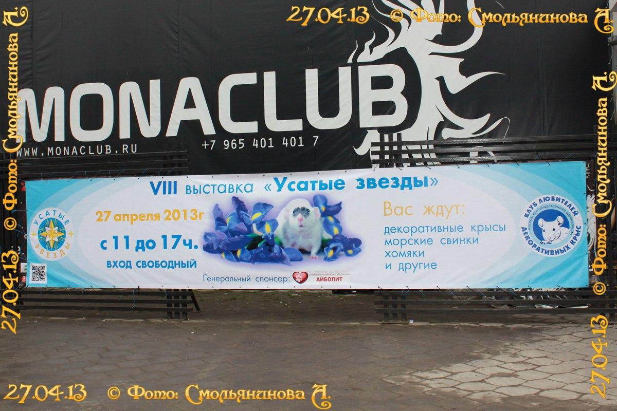 http://cs402217.vk.me/v402217077/8118/y00NPTsvKCU.jpg