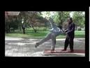 Мастер Виктор Сяо. Восемь настроек силы-цзинь (съемка 2011 года)