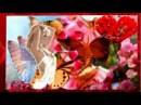 ВИКТОР  КОРОЛЁВ алые  розы