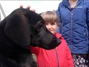Блогер Виталий Ковригин приютил спасенную телевизионщиками собаку