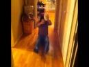 Mark Acorn крупа Monster in my house vine