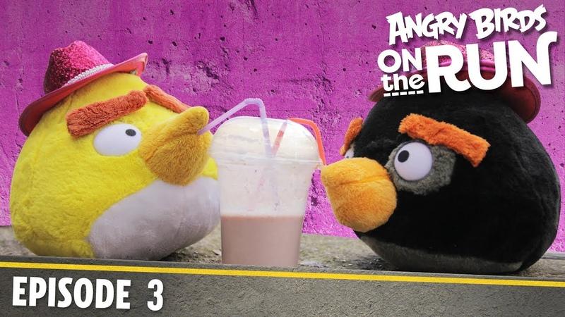 Angry Birds on The Run | Baby's Shaky Ride - S1 Ep3
