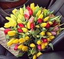 Пусть эта весна принесет всем счастье и любовь!