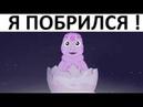 Лютые приколы ЛУНТИК ПОБРИЛСЯ и Чипсы фирмы ПЕПСИ