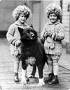 Собака-герой Балто