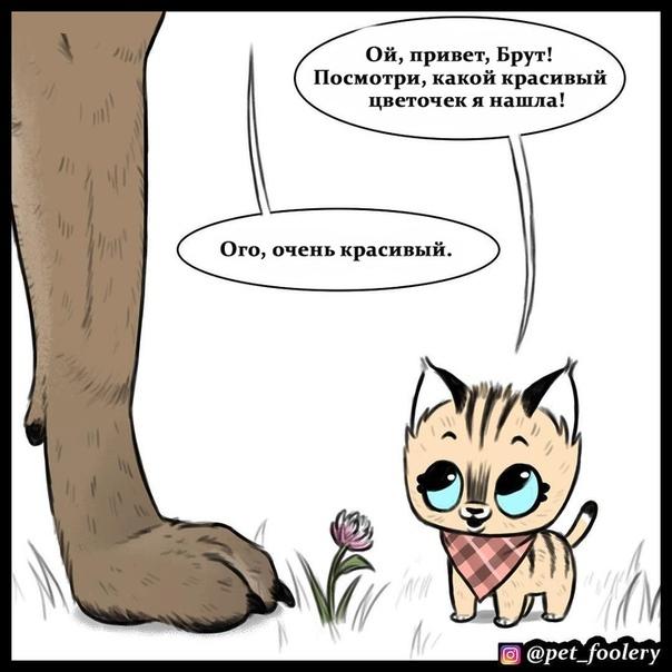 Красивый цветочек Иллюстратор: pet_foolery