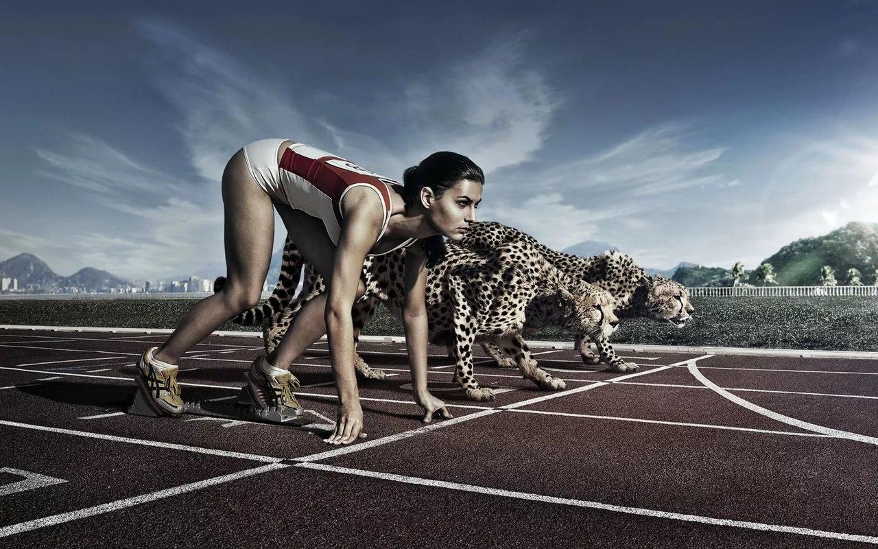 Какова взаимосвязь между питанием и атлетикой?