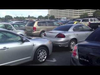 Покупка машины в америке! Как выглядит аукцион по продаже авто! Штат Флорида