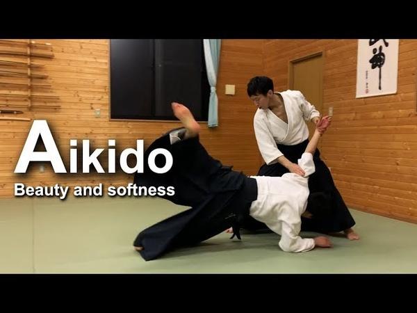 Beautiful and soft High Level Aikido ‐ Shirakawa Ryuji shihan