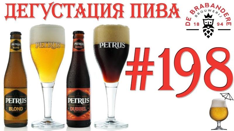 Дегустация пива 198 - два сорта бельгийского пива Petrus! 18