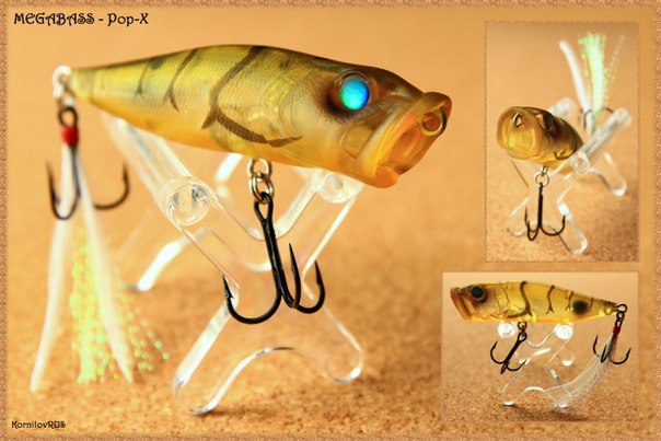 приманку для рыбы