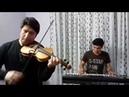 Irani Violins
