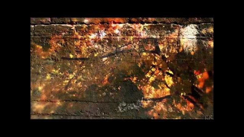 Черный кофе Листья С ветки падающий лист Переступи порог 1987