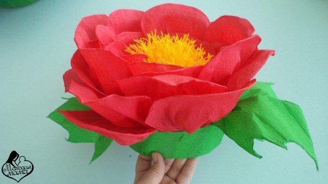 Шапочки цветов из бумаги своими руками