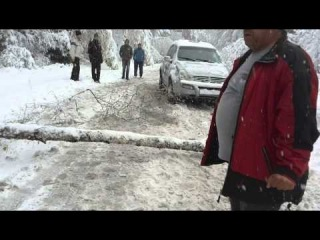 Боровец сняг