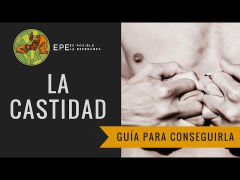 La castidad - Pasos a seguir, limites y visión catolica ¿Dejar de ver nopor?