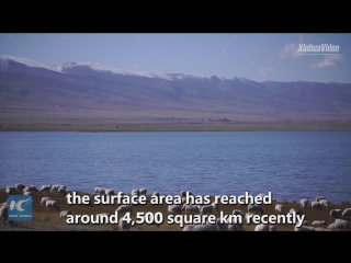 «Синее море» на северо-западе Китая