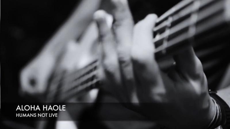 Aloha Haole - Humans Not Live (Live at Caverna Estúdio)