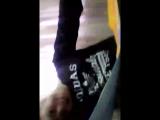 Арина Малина - Live