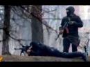 Последние новости из Украины. Снайперов на майдане наняли власти оппозиции Крым Россия Путин