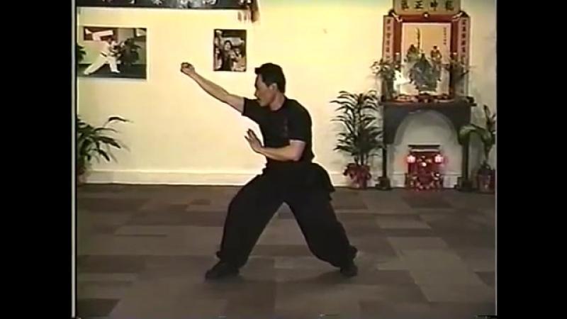 Sifu Mak Hin Fai Choy Lay Fut Level 1